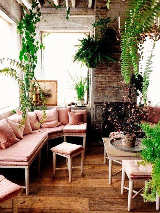 Jungle conservatory