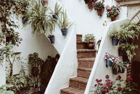 Clay garden